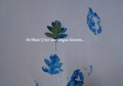 DSC_0079 - Copie